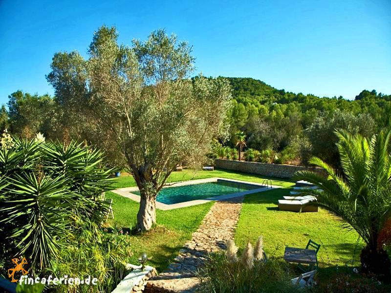 Ibiza finca mit pool und g stehaus can furnet for Garten pool wanne
