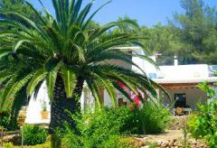 Private Finca an der Cala Jondal (Nr. 0048)