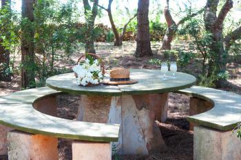 Schattiger Sitzplatz im Garten