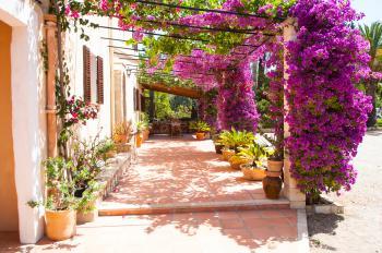 Terrasse der mallorquinen Finca