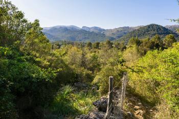 Blick zum Tramuntanagebirge