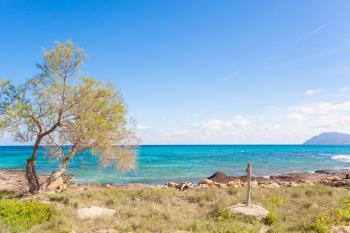 Mallorca Urlaub am Meer - Son Serra de Marina
